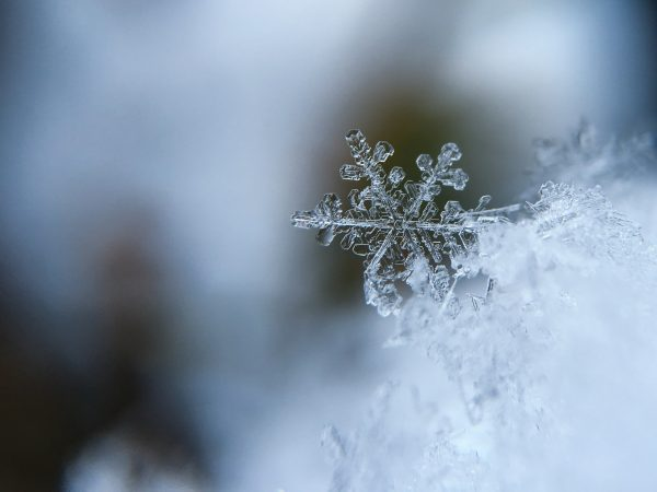 Tips & Tricks to Stay Outdoors in the Winter