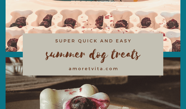 Quick & Easy Dog Treat Recipe for Summer